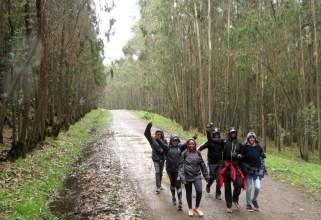 run-africa-ethiopia-addis-ababa-2017-team-building-diageo-entoto-hike (13)