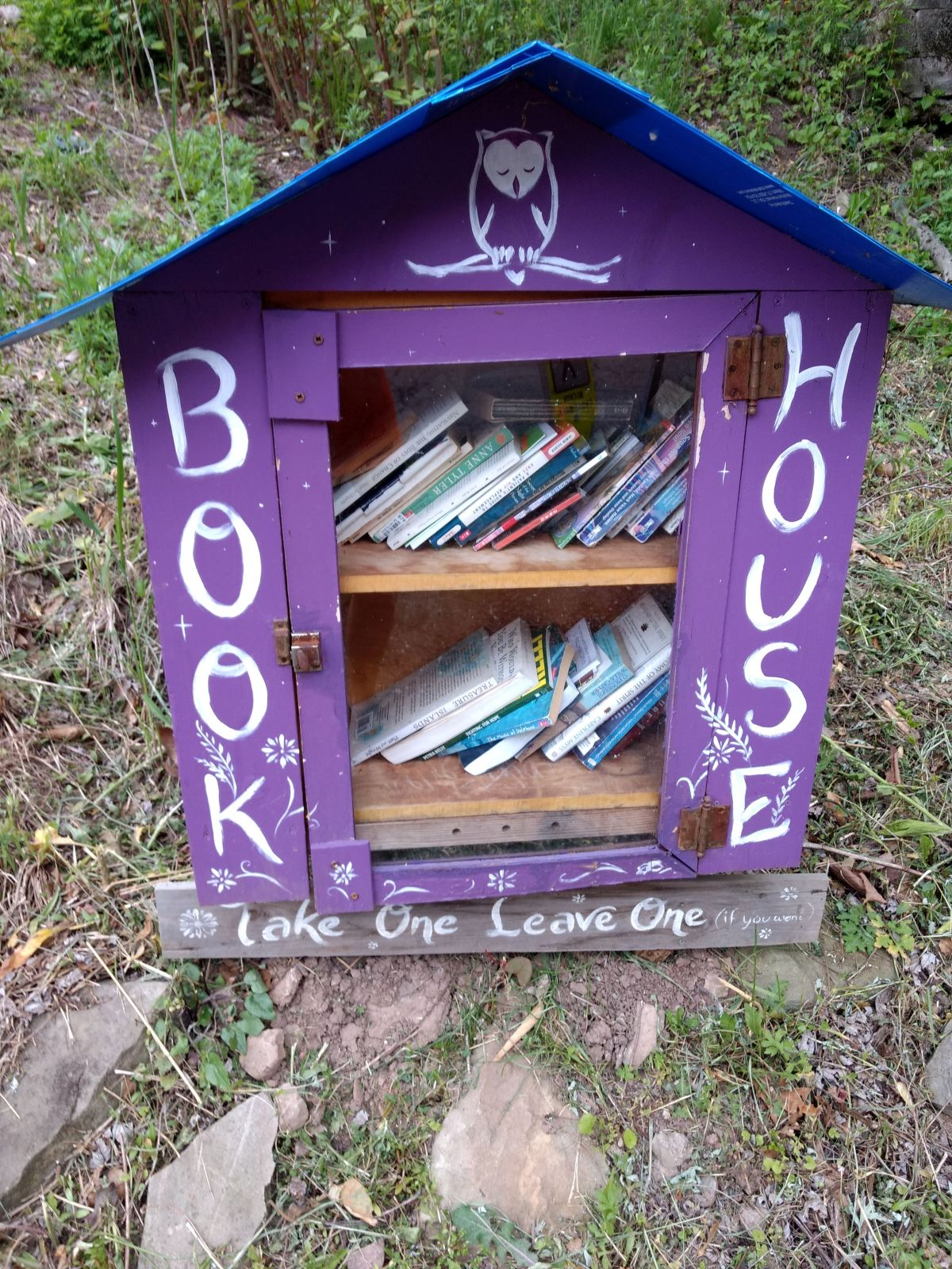 Little Library and Big Steps in Hazelwood
