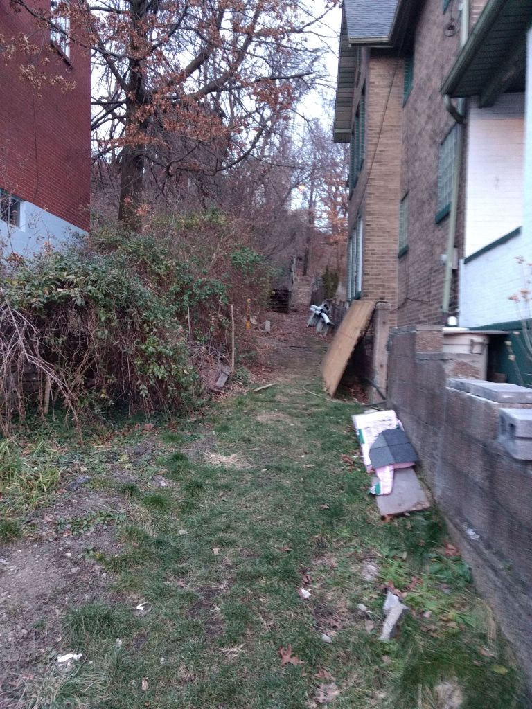 Side-yard Steps