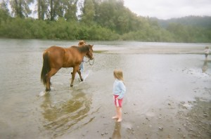 horses n kids stolling in the river