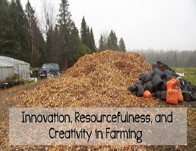 innovative, resourcefulness, and creativity in farming