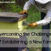 overcoming the challenges of establishing a new farm