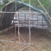 temporary summer coop