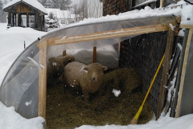 winter preparations for the farm, garden, and homestead