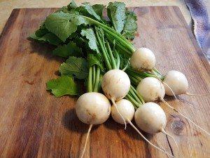 fall hakeuri turnips