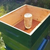 feeding beehives syrup in the fall