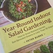 year round salad gardening