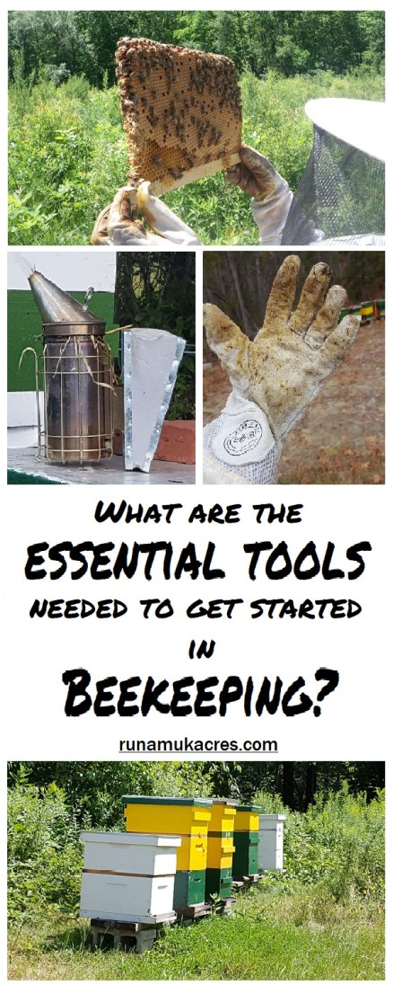 Thinking of getting bees? Wondering what are the essential tools needed to get started in beekeeping? Check out Runamuk Acres in Maine for the answer!