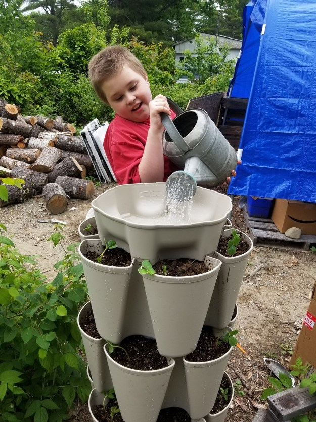 greenstalk easy watering