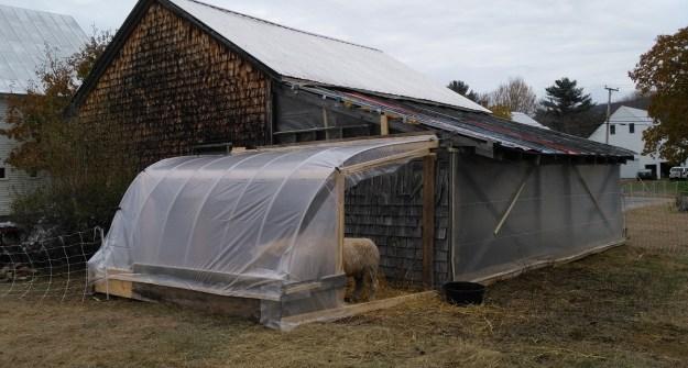 finished sheep-shed