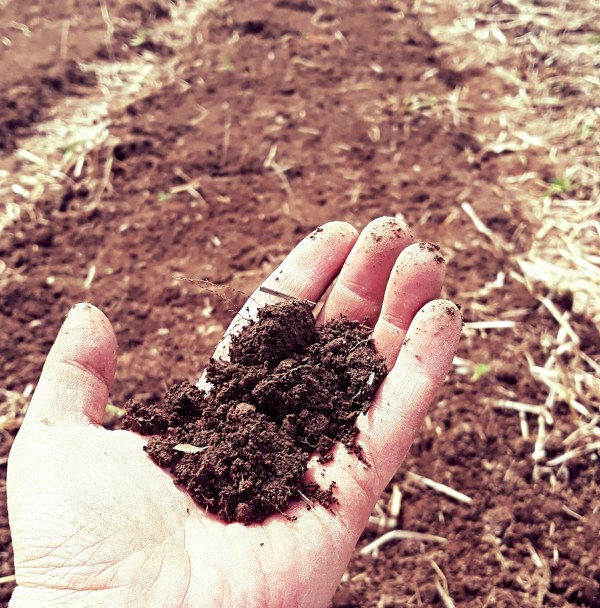 cultivating soil health