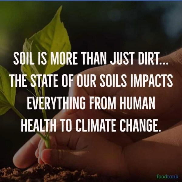 soil is more than just dirt