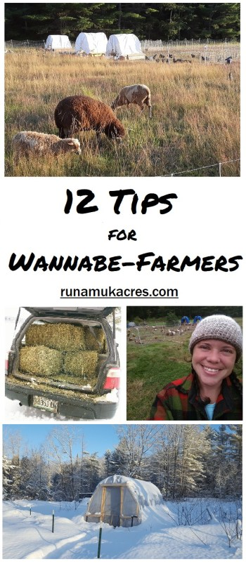 12 tips for wannabe-farmers