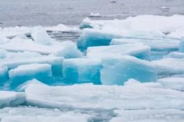 Beautiful sea ice