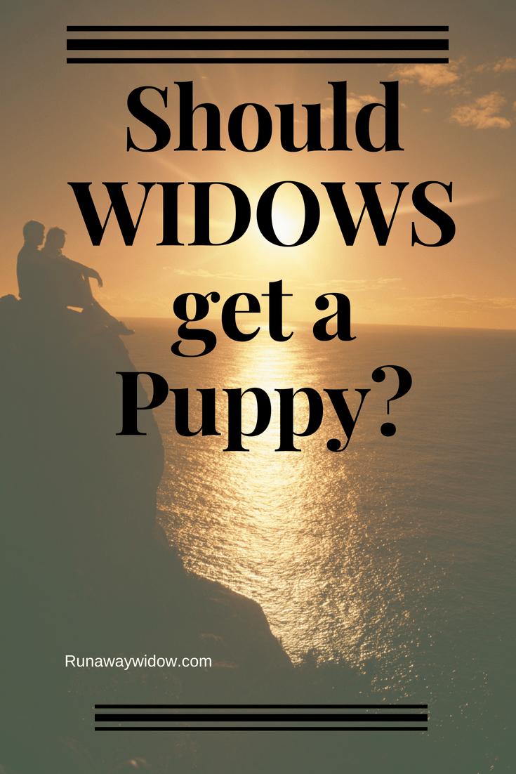 should widows get a pet