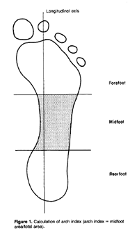 """Application of the """"Wet Test"""" and Static Arch Height for"""