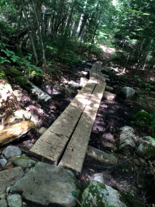 my favorite part about the beginning of ADK trails