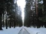 Skogskyrkogården - UNESCO World Heritage Site.