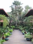 Angkor Village Hotel.