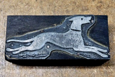 En smärt och snabbspringande hund inleder dagens knippe med klichéer.