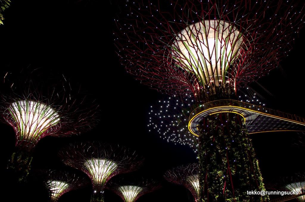 Garden By The Bay Fireworks gardenthe bay – runeatgossip