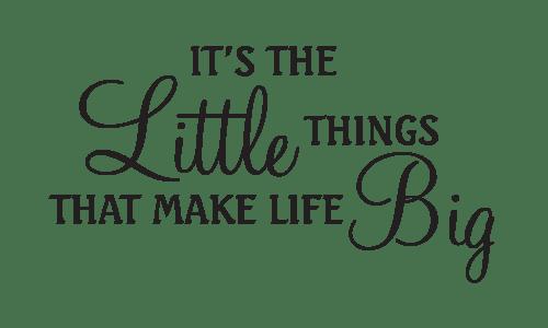 Little things make life big