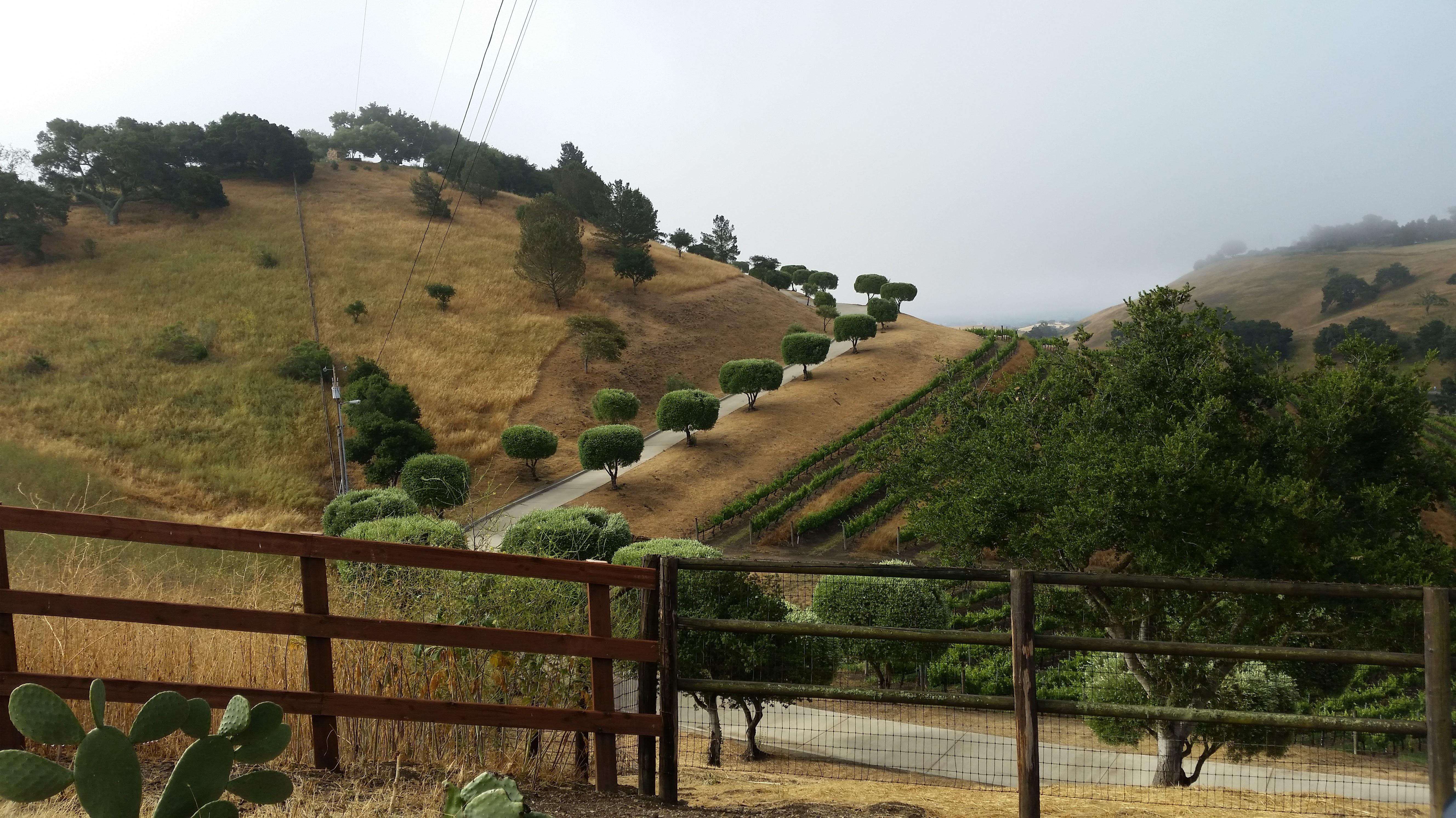 solvang hills