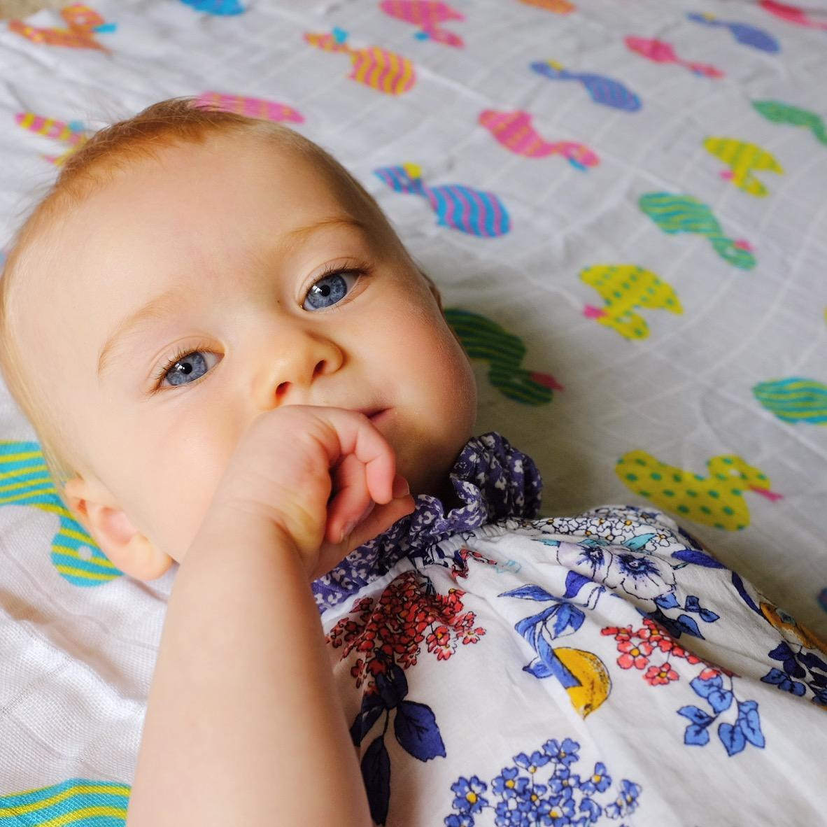Cuski Comforter – The Great Swandoodle **REVIEW**