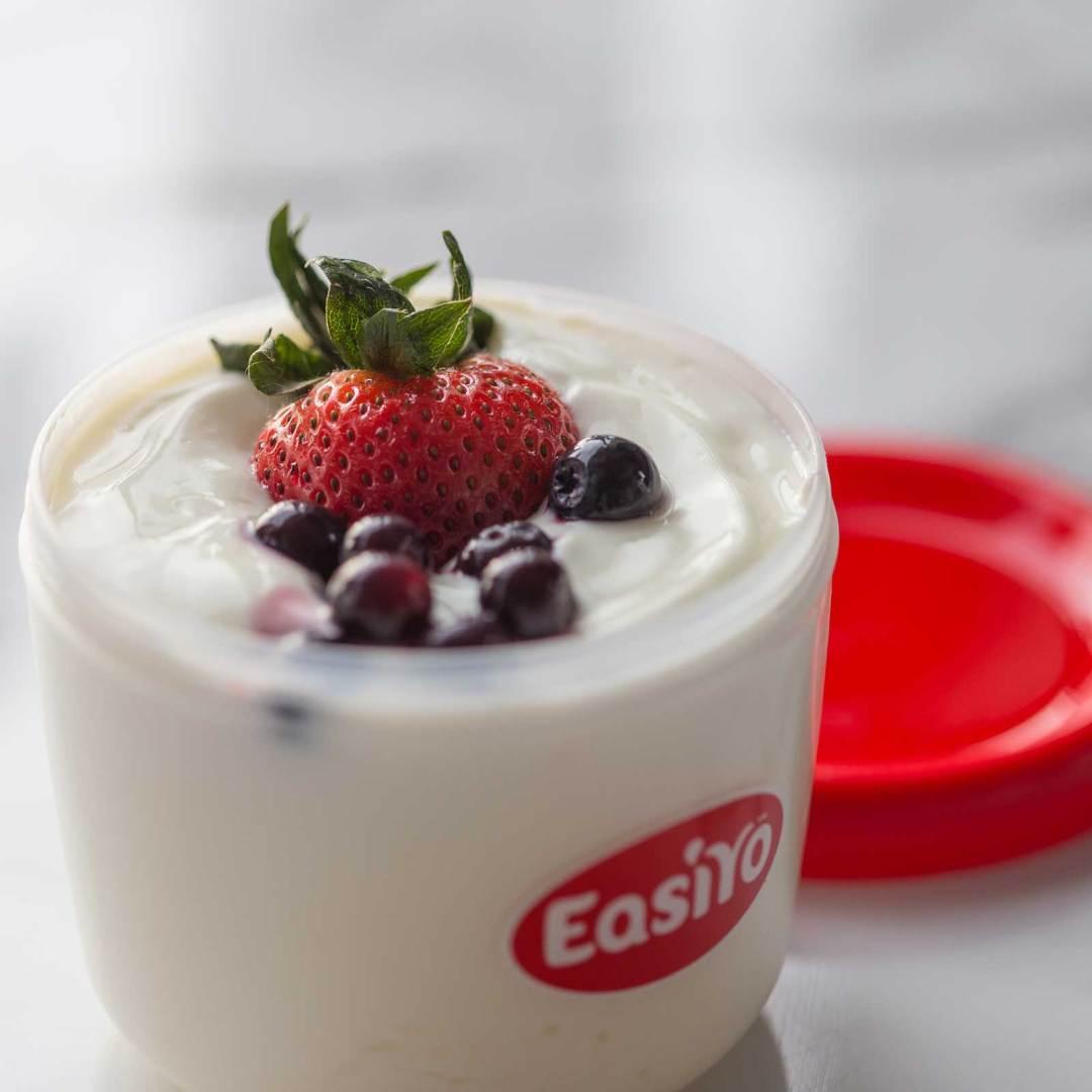 EasiYo Starter Kit – Yoghurt Maker – Giveaway