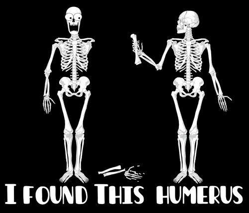 Anatomy Jokes Rule