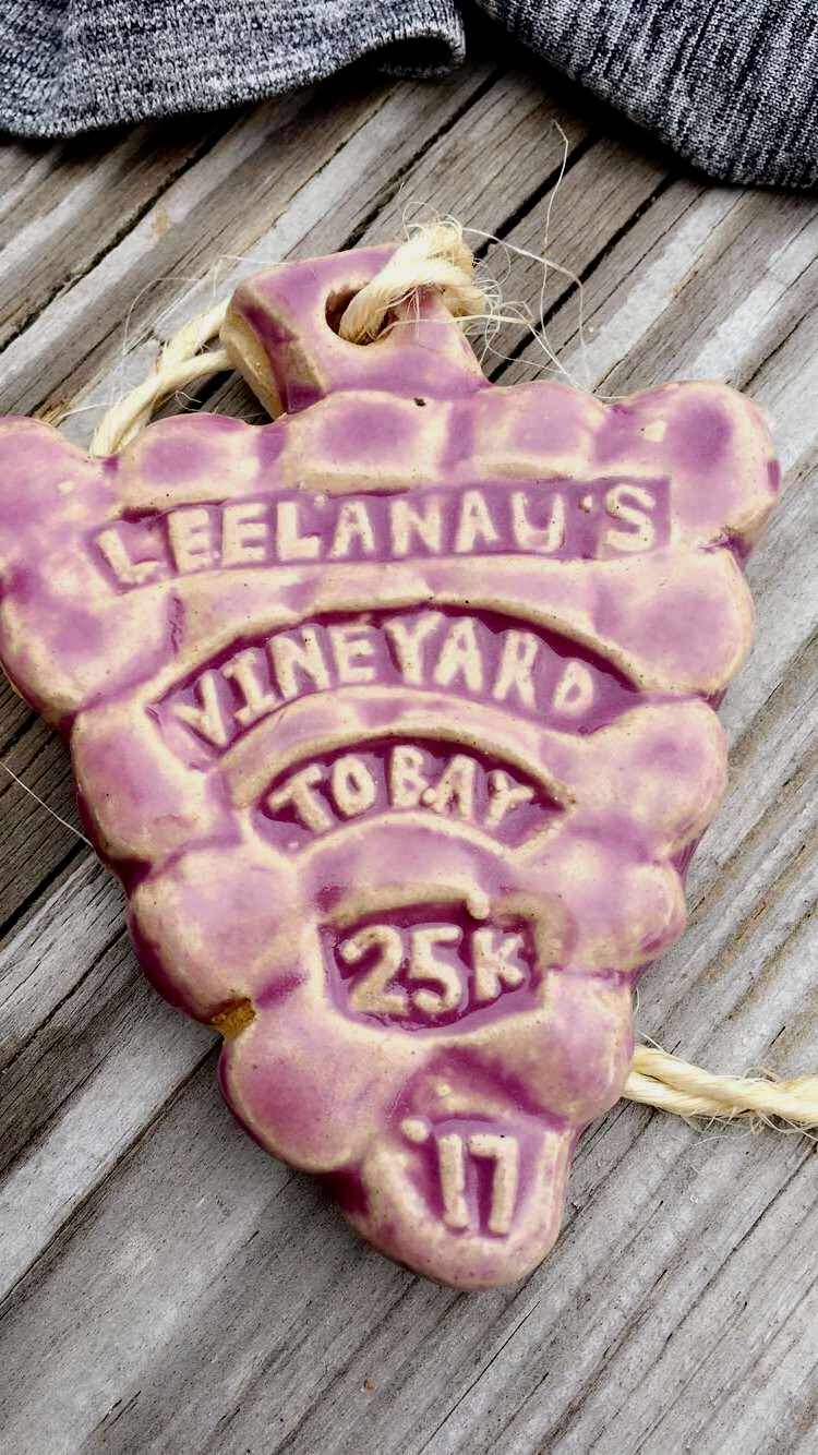 Vineyard to Bay 25k Race Recap - Run Leelanau