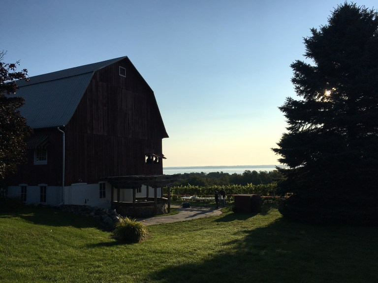 Harvest Stompede Race Recap - Run Leelanau