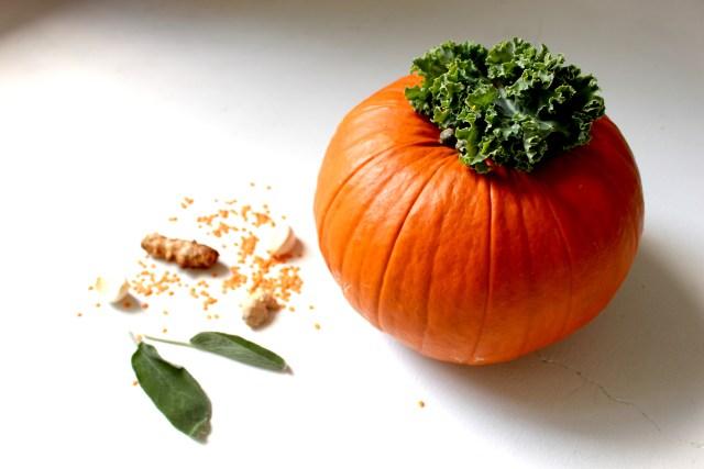 pumpkin lentil kale curry