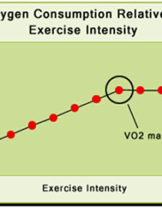 Vo max for runners also how understanding can help you run faster rh runnersconnect