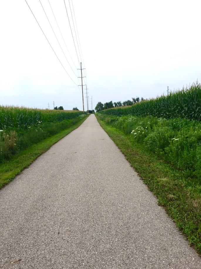 Marathon-training-long-run