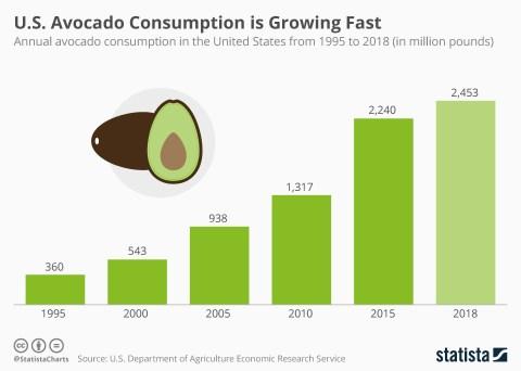 Κατανάλωση αβοκάντο στην Αμερική