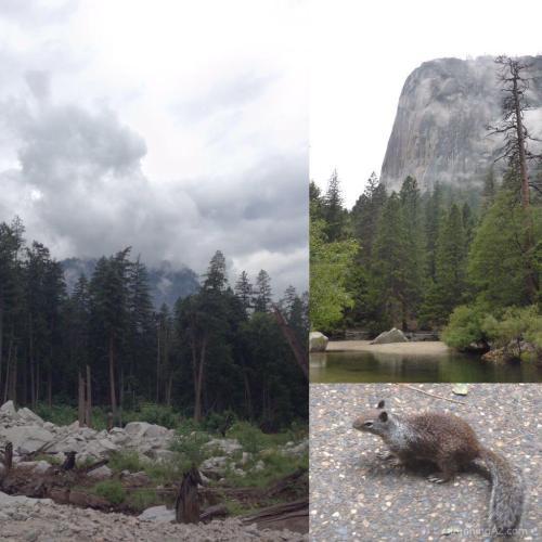 Yosemite_tenaya
