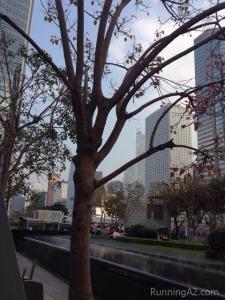 HK Skyscraper