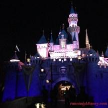 Disneyland Castle at Night