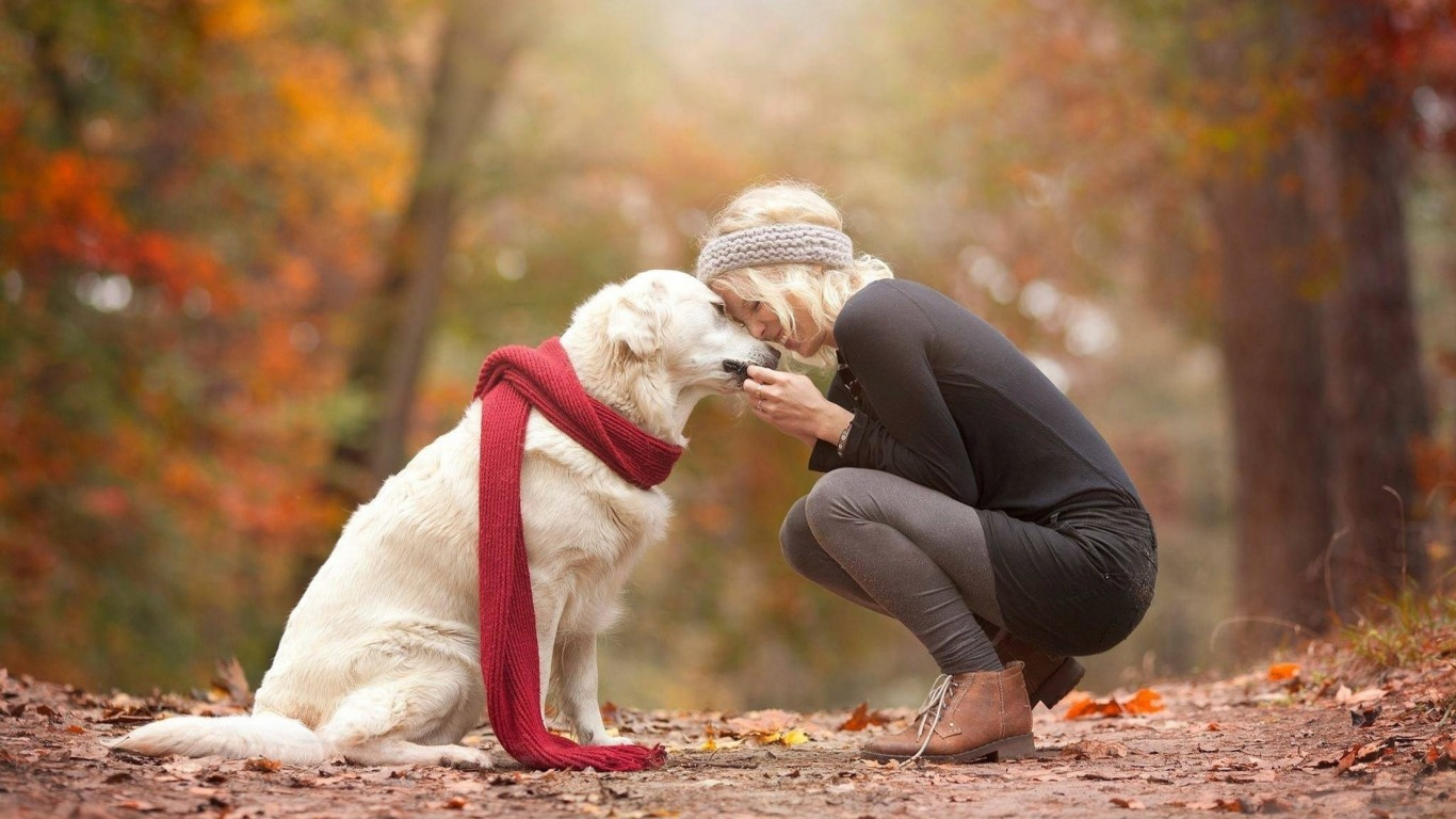 How To Target Pet Owners On Social Media