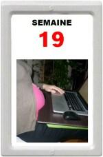 19 SA
