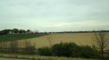 illinois farm land