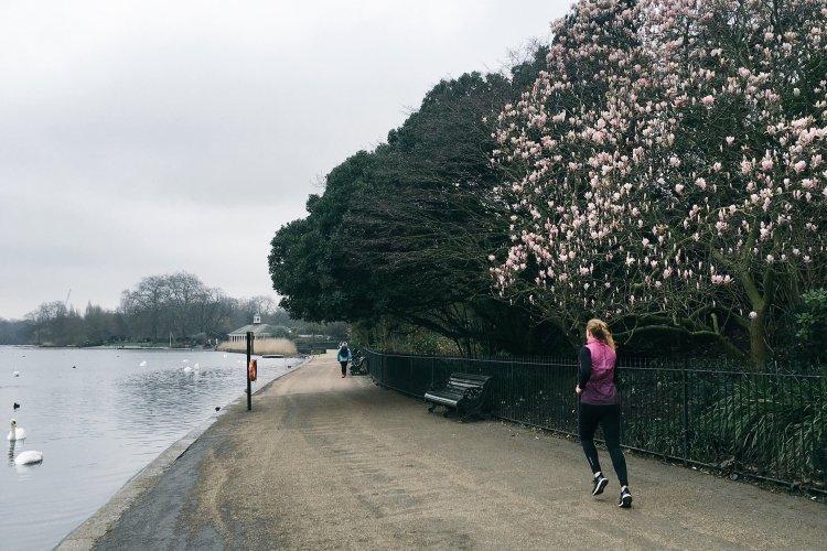 Hardlopen in High Park