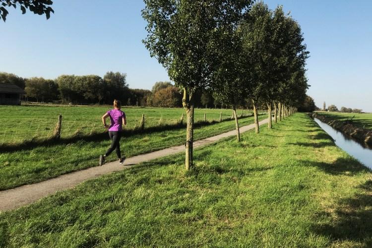 Nog maar drie weken tot de Berenloop halve marathon!