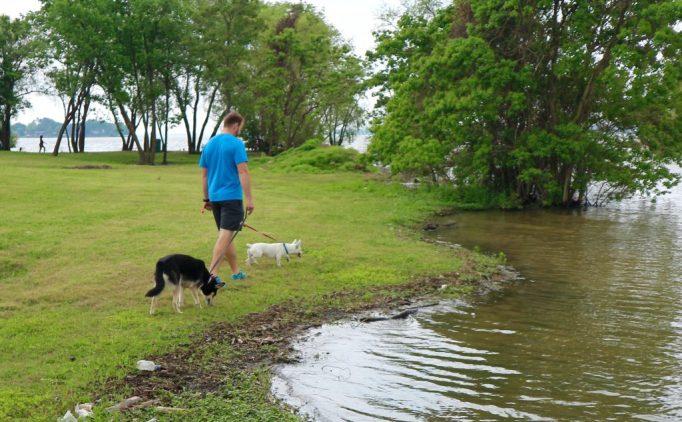 Glamping with Pets- Cedar Creek Lake