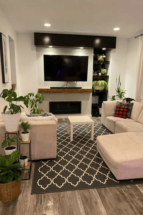 Living Room Decorated with Plants