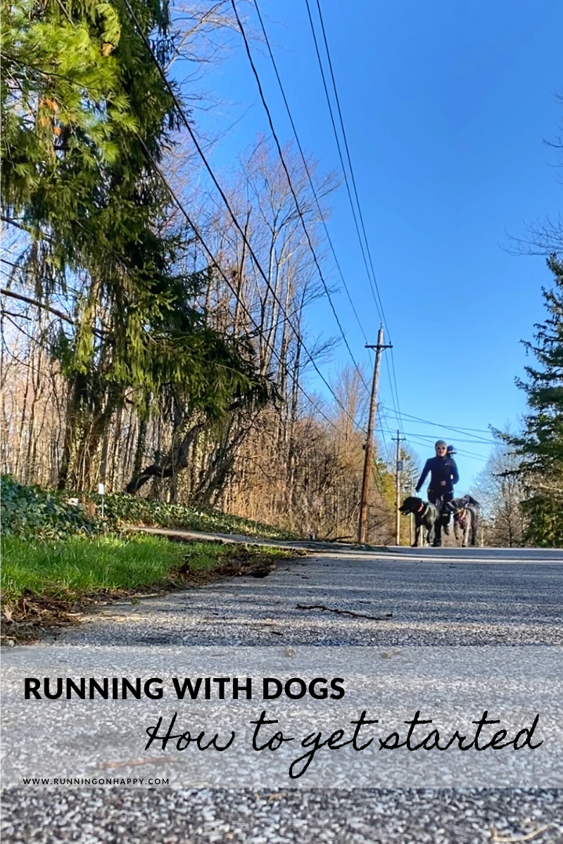 Running with Dogs: How to Get Started | Running on Happy