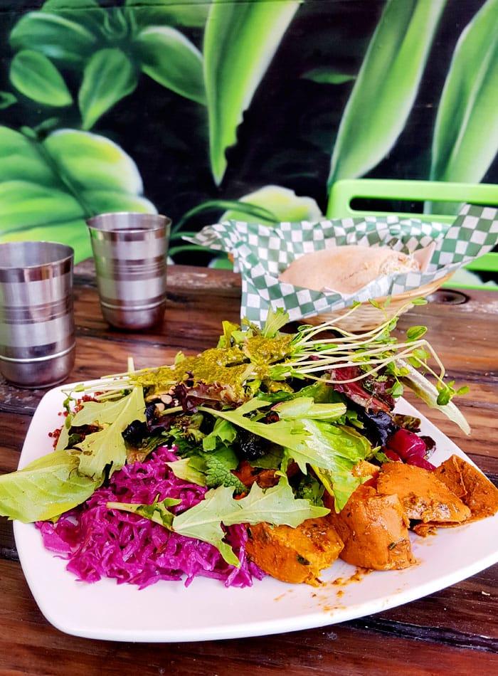 salad-panthere-verte-montreal-vegan