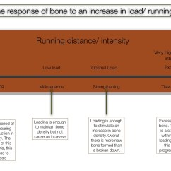 Diagram Of Tibia Stress Fracture Wiring Symbols Automotive Managing Shin Pain And Splints If This Progresses To An Actual A More Focal Specific Is Expected Usually Gets Progressively Worse When Running