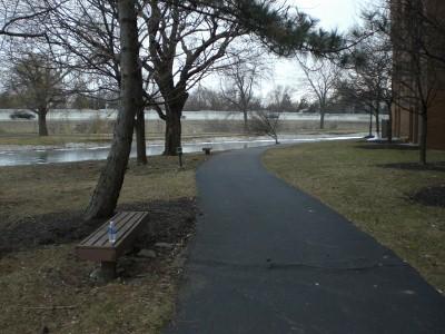 My running trail: notice the frozen pond behind.